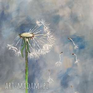 dmuchawiec ii - obraz akrylowy formatu 30/40 cm, akryl, płótno, dmuchawiec