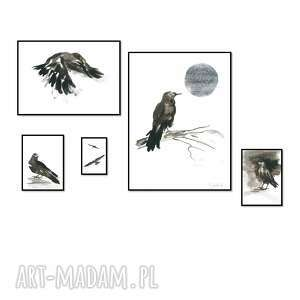zestaw 5 grafik kruki, ręcznie malowane, oryginał, grafika, kruki, obrazy