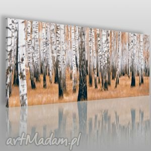 obrazy obraz na płótnie - las brzozowy 120x50 cm 04701, las, drzewa, brzoza