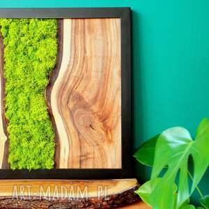 obraz drewniany z orzecha oraz mchu w ramie stalowej. Loft, chrobotek, orzech