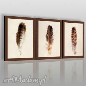 obraz na płótnie - pióra tryptyk 3x50x70 cm 01902, pióra, ptak, natura