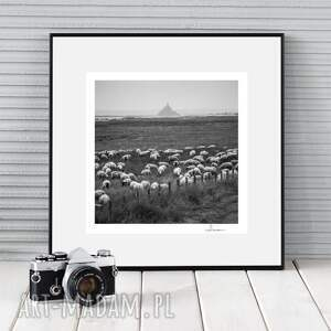hand-made fotografie autorska fotografia analogowa, mont sheep michel, francja