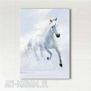 obraz - biegnący biały koń wydruk na płótnie, obraz, płótno, koń, malowany