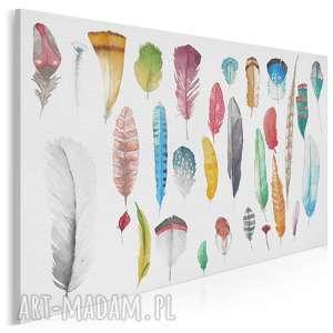 obraz na płótnie - kolorowe pióra 120x80 cm 53001, pióra, pióro, kolorowy