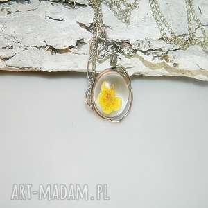 szklane terrarium-kaczeńce, szklany, szklany-wisior, unikatowa-biżuteria