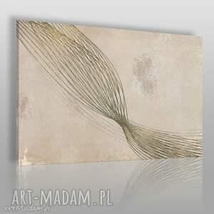 obraz na płótnie - abstrakcja linie 120x80 cm 18401 , linie