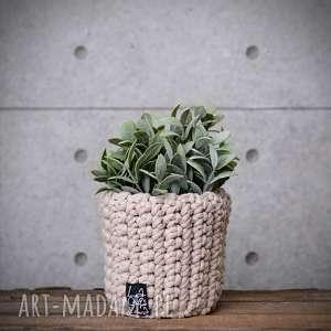 dekoracje doniczka cappuccino, s, doniczka, doniczki, roślina, prezent, dekoracyjna