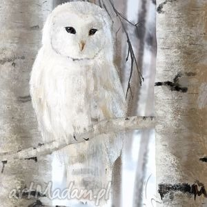 obraz biała sowa - skandynawski płótno, obraz, sowa, skandynawski, natura