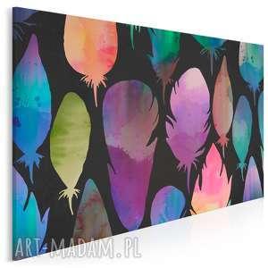 obraz na płótnie - kolorowe pióra 120x80 cm 32201, pióro, pióra, kolorowy