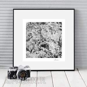 autorska fotografia, mroźna abstrakcja, dekoracja, ozdoba, zdjęcie