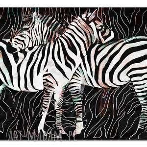 obrazy obraz xxl zebra 2 - 120x70cm na płótnie loft zwierzęta, obraz, zebry