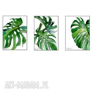 ajan art monstera - grafika, monstera, grafiki do salonu, tryptyk, obraz