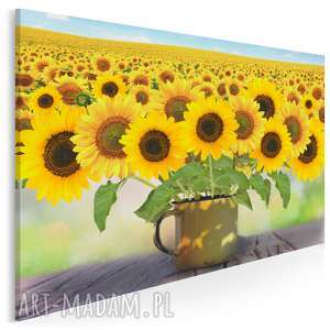 obraz na płótnie - kwiaty słoneczniki kubek pole natura 120x80 cm (82401)