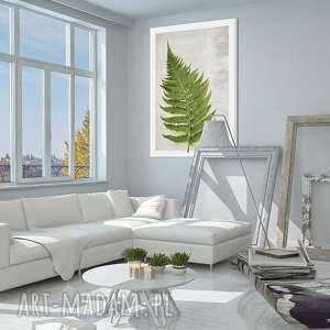 obraz na płótnie - 70x100cm paproć 02168wysyłka w 24h, obraz, paproć, roślina