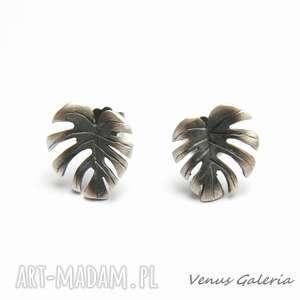 kolczyki monstera - srebrne, srebro, kolczyki, kwiat, biżuteria, oksyda