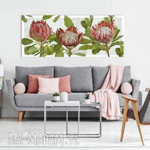 obraz drukowany na płótnie kwiat protea -duży format 150x60 0351