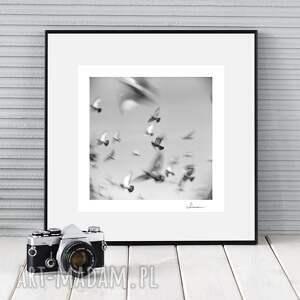 myk studio autorska fotografia analogowa, poruszenie, zdjęcie, fotografia, analog