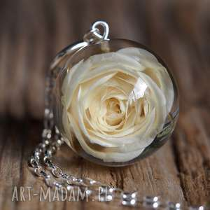 naszyjnik z żywicy z naturalną białą różą, długi, srebro