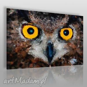 Obraz na płótnie - SOWA OCZY 120x80 cm (01701), sowa, oczy, wzrok, dziki, zwierzę