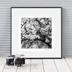 fotografie autorska fotografia analogowa, kwiaty i