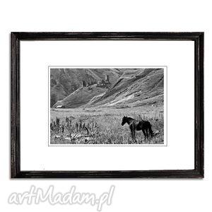 Wolny, fotografia autorska, fotografia, pejzaż, góry, konie, gruzja