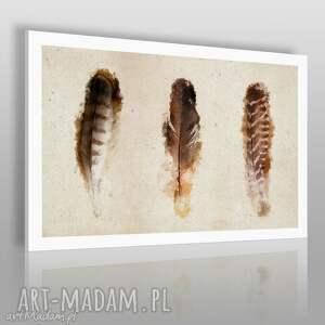 obrazy obraz na płótnie - pióra 120x80 cm 01903 , pióra, ptak, natura, pióro