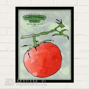 plakaty pomidor plakat 30x40