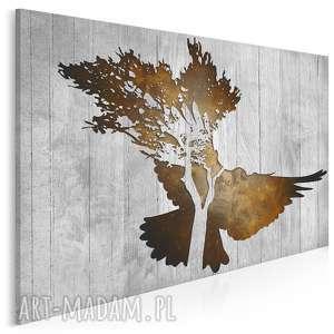 obraz na płótnie - gołąb brązowy 120x80 cm 33403, gołąb, deski, drewno, ptak