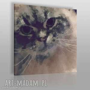 obraz na płótnie - kot kitty 80x80 cm 01401 , kot, kitty, puszysty, zwierzę, kotek