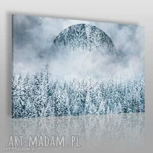 obrazy obraz na płótnie - góry las zima 120x80 cm 33101 , góry, las, zima, koło