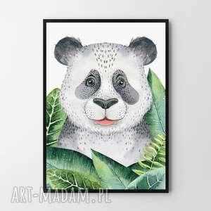 Plakat obraz panda 50x70 cm b2 pokoik dziecka hogstudio dom,