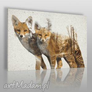 obraz na płótnie - lisy drzewa 120x80 cm 26901, lis, lisy, rudy, zwierzę, las