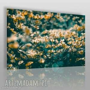 obrazy obraz na płótnie - łąka kwiaty 120x80 cm 08301, kwiaty, kwiatki