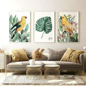 zestaw 3 plakatów #8 a3 - 29 7x42 0cm, obraz, plakaty, papuga, ozdoba