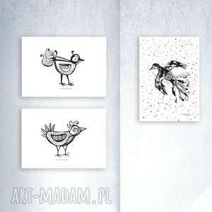 3 plakaty z ptaszkami, zestaw plakatów biało-czarnych