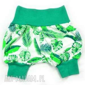 krótkie spodenki pumpy bawłna, liście, monstera palma, szorty, dla dziewczynki