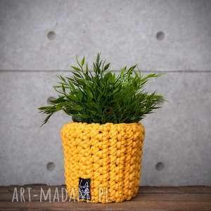 doniczka żółta, s, doniczka, doniczki, prezent, dekoracyjna, kuchnia, roślina