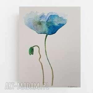 niebieski mak-akwarela formatu a5, akwarela, mak, papier, kwiatek