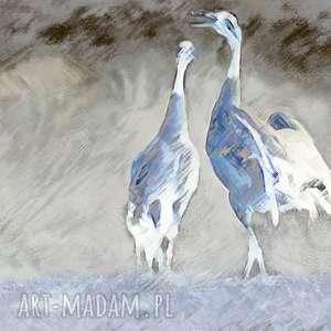 Obraz na ścianę żurawie niebieskie 120 x 80, nowoczesny