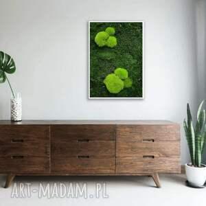obraz z naturalnego mchu zielona ściana w twoim domu ramie, 70x50 cm, mech