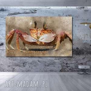 obraz KRAB 1 - 120x70cm na płótnie modern, obraz, krab, zwierzęta, modern