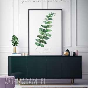 plakaty plakat b2 liście, plakat, wystrój, wnętrza, liść, dekoracja, piękny