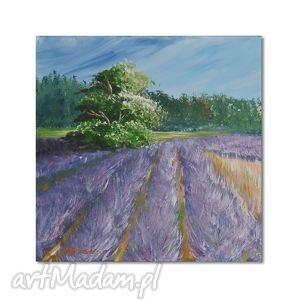 lawendowe pole, obraz ręcznie malowany - obraz