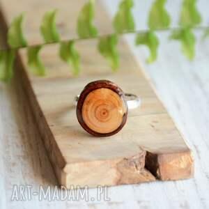 las drewniany pierścionek - modrzew