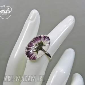 fioletowe kwiat 0550/ mela pierścionek - stokrotka