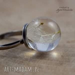 nasiona dmuchawca pierścionek kula z nasionami