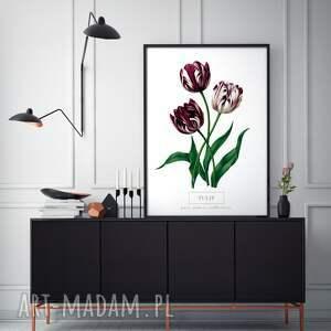 gustowne plakaty wystrój plakat b2 kwiaty