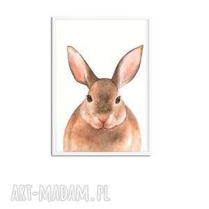 pokoik dziecka obrazki galeria 6 obrazków ze zwierzakami