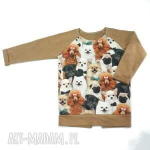 brązowe bluza puppy