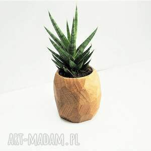 drewno wazony doniczka geometryczna - planter